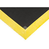 Tapis de désinfection | Zenith Safety Products