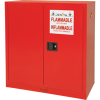 Paint/Ink Cabinet SDN650 | Zenith Safety Products