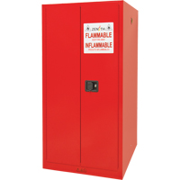 Paint/Ink Cabinet SDN652 | Zenith Safety Products