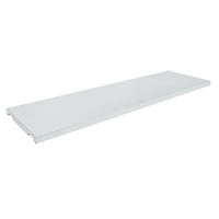 Additional Shelf for Drum Cabinet SGC865 | Zenith Safety Products